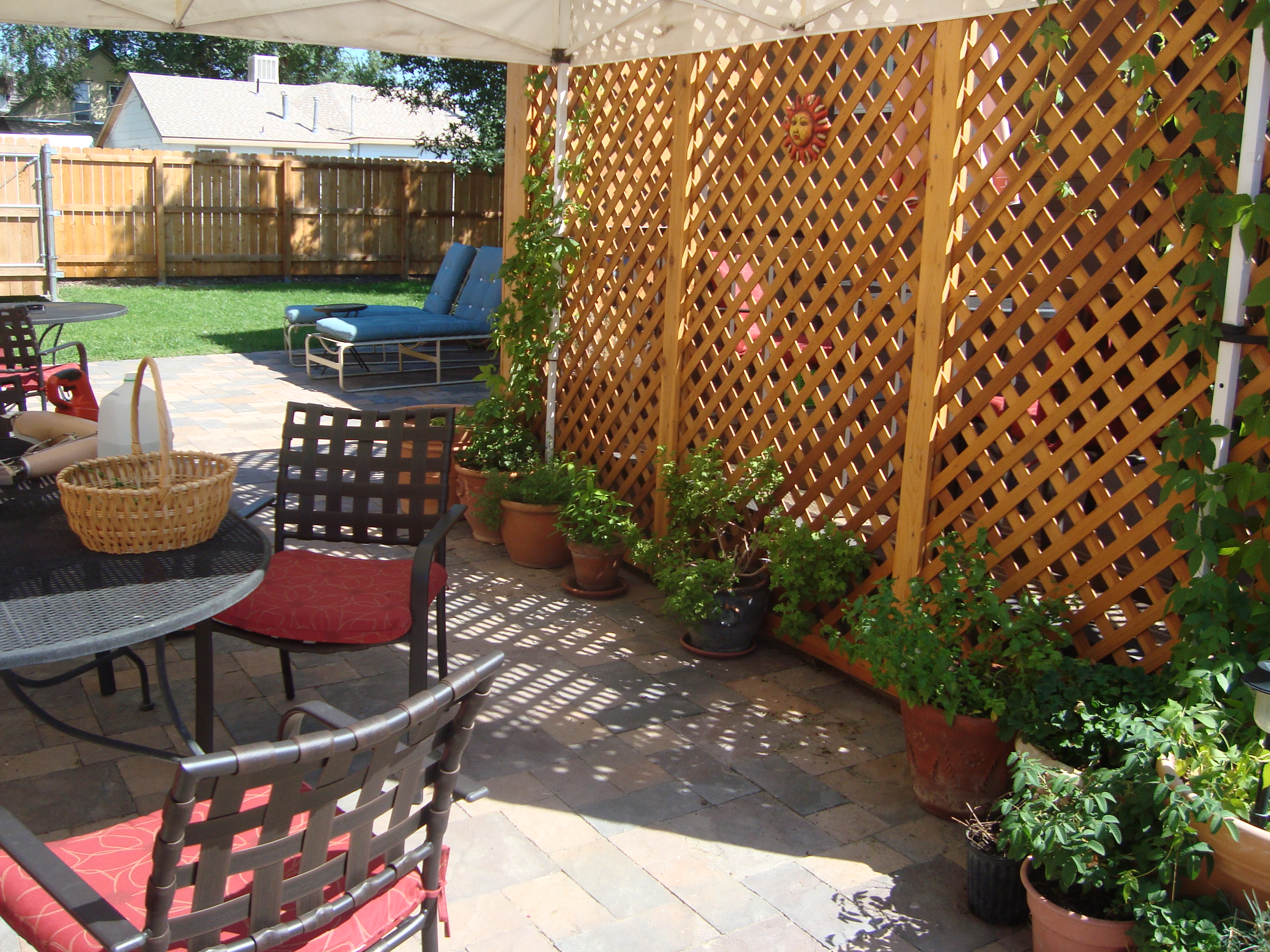 A good luck story lavender and so much more for Backyard patio privacy ideas