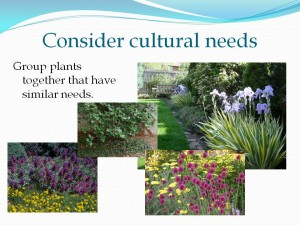 Consider cultural needs of your plants